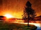 Ağaç Nehir ve Güneş