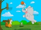 Basketçi Fil