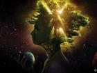 3 Boyutlu Ağaç ve İnsan Yapbozu