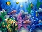 Akvaryumdaki Balıklar