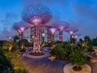 Bay Central Garden-Singapur Yapbozu