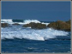 Deniz Yapboz