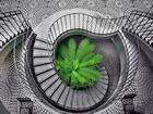 Dönen Merdiven Yapbozu
