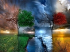 Dört Mevsim Bir Arada