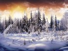 Kar Örtüsü Yapbozu