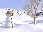 Kardan Adam yapbozu