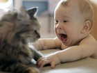 Kedi ve Şaşkın Bebek