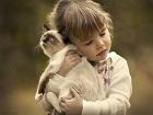 Kedisini Bırakmayan Kız Yapbozu