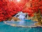 Kırmızı Ağaçların Arasındaki Şelale