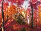 Kırmızı Sonbahar Ormanı