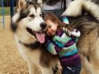 Köpeğim ve Ben Mutluyuz