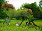 Koşturan Yeşil Atlar Yapbozu