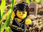 Lego Ninjago-Cole
