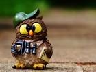 Maskot Baykuş Yapbozu