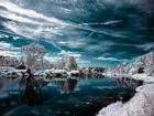 Mavi Gökyüzü ve Beyaz Orman
