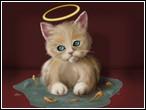 Melek Kedi Yapboz