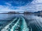 Norveç Denizi Yapbozu