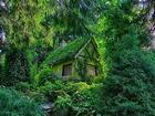 Orman Perisi Evi-Kanada Yapbozu