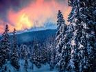 Orman ve Gün Batımı Yapbozu