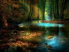 Ormandaki Renkli Manzara Yapbozu