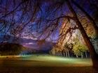 Parkta Bir Akşam Üstü