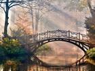 Parktaki Köprü