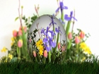 Paskalya Yumurtasına Bir Dünya Sığdı