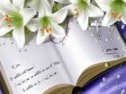 Sevgiliye Not Yapbozu