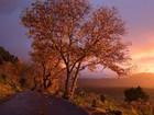 Sonbahar Gün Batımı ve Huzur Yapbozu