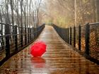 Tahta Köprü ve Kırmızı Şemsiye