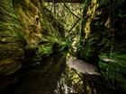 Yeşil Duvarlar Arasında - Zor